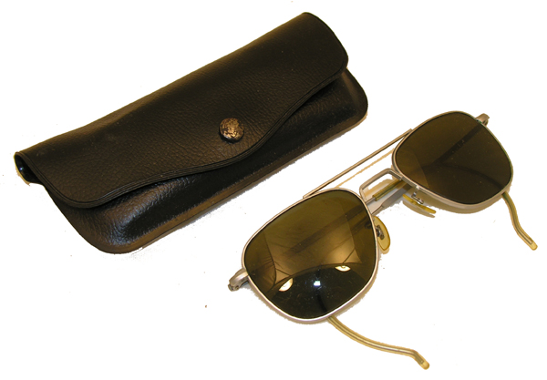 Aviator Sunglasses with Case