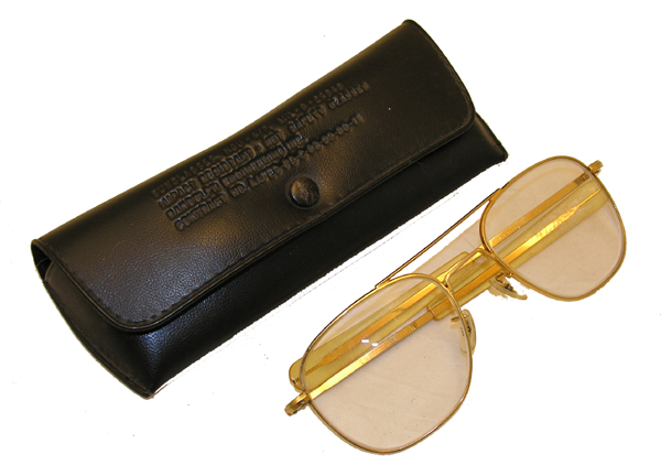 Aviator Eyeglasses with Case