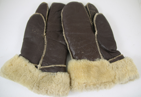 Leather Shearling Flight Gloves