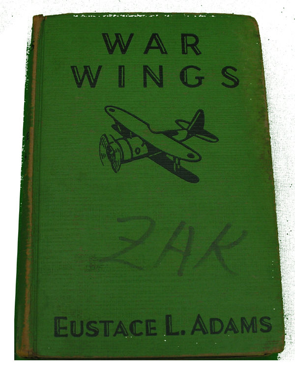 Boys Series Book - War Wings
