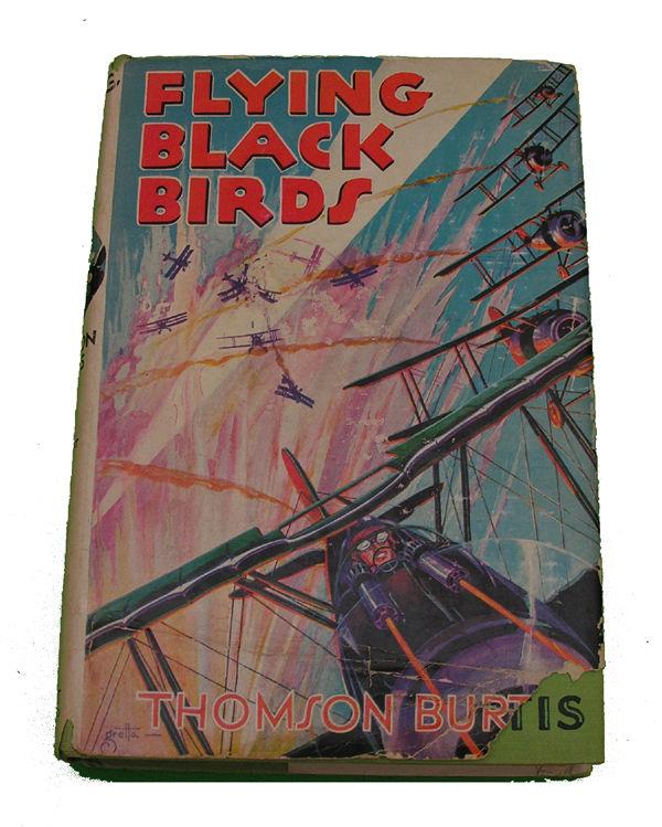 Boys Series Book - Flying Black Birds
